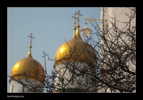 12kremlin04-tree-domes.jpg