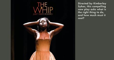 The Whip.jpg